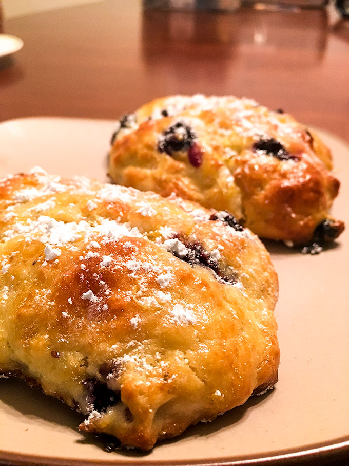 blueberry biscone biscuit